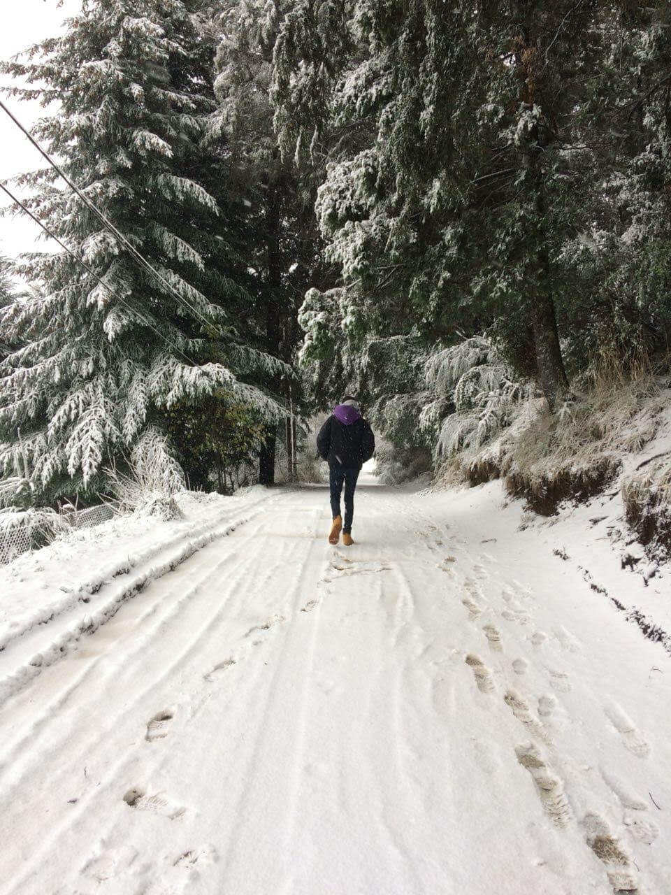 Lautaro Ferreyro walking away in a snow covered road